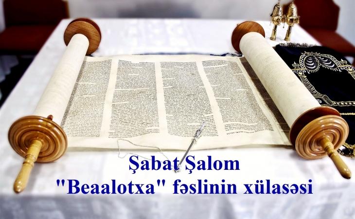 """""""Beaalotxa"""" fəslinin xülasəsi"""