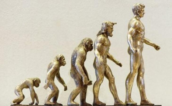 İnsanın əcdadı MEYMUN DEYİL? - Darvinin nəzəriyyəsi şübhə altına alındı